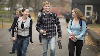 QT电子游戏的学生们走在小路上.