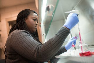 Biology student working in the lab