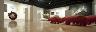 The Johnson Gallery