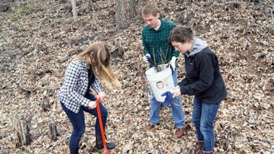 Volunteers Plant 800 Seedlings