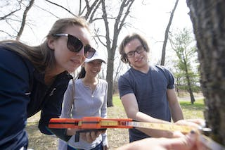 Students in BIO 126/127 determine tree height using a clinometer and tree girth using a Diameter at Breast Height (DBH) tape.