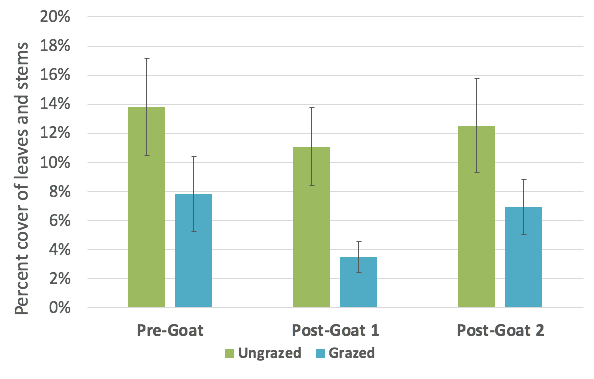 Chart of the average buckthorn leaves and stems in ungrazed and grazed pens: Pre-Goat (May), Post-Goat 1 (June) and Post-Goat 2 (September).
