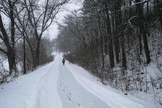 Path Snow