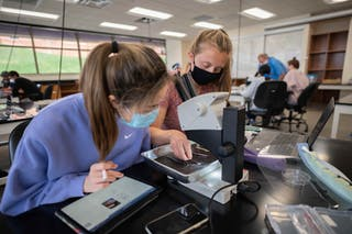 Biology students at Bethel now have the benefit of studying insects from around the world from the comfort of their own labs.