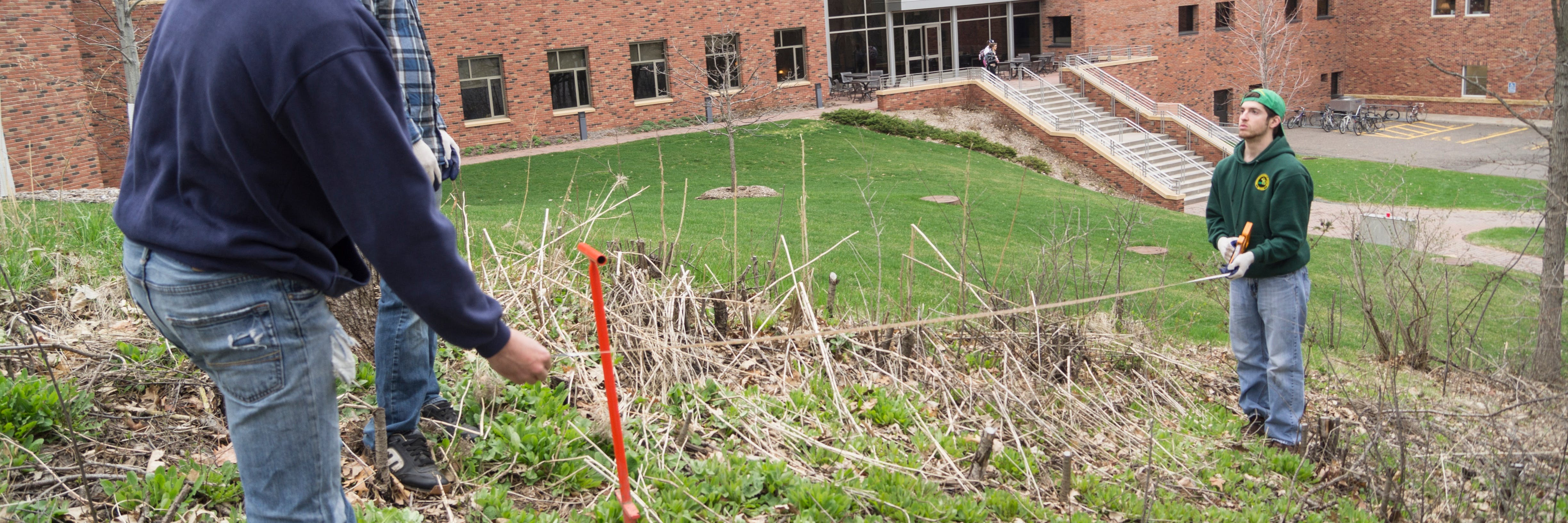 Students working to restore Bethel's native landscape